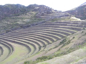 Terraces at Inca Pisac